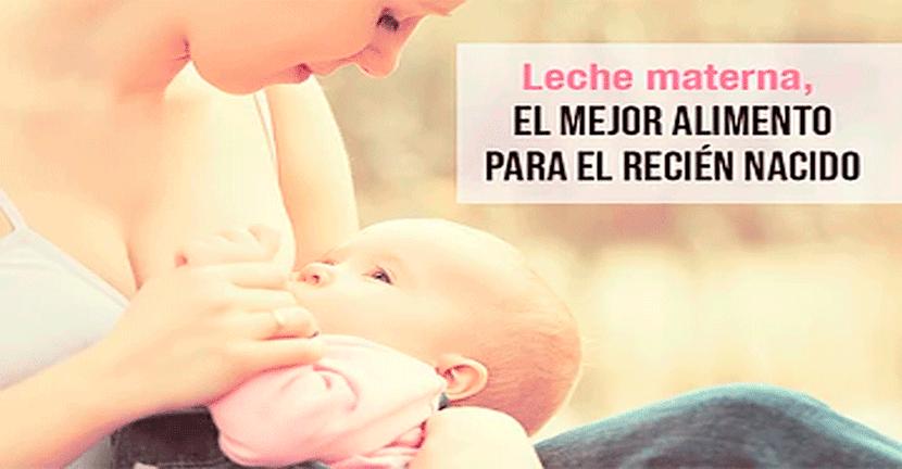 Imagen Leche materna, el mejor alimento para el recién nacido