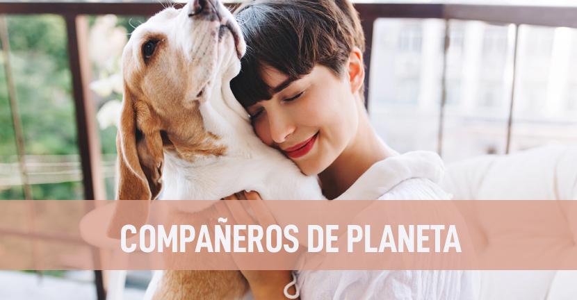 Imagen Compañeros de planeta