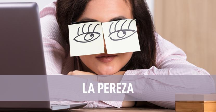 Imagen La pereza