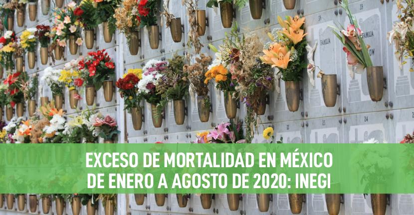 Imagen Exceso de mortalidad en México de enero a agosto de 2020: INEGI