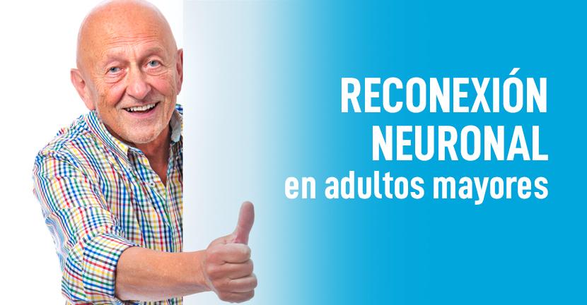 Imagen Reconexión neuronal en adultos mayores