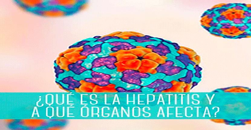 Imagen ¿Qué es la hepatitis y a qué órganos afecta?