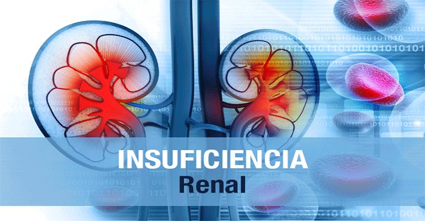 Imagen Insuficiencia Renal