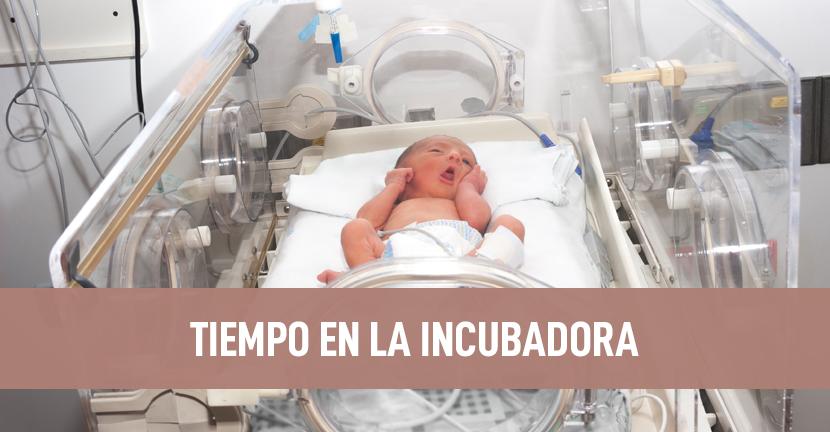 Imagen Tiempo en la incubadora