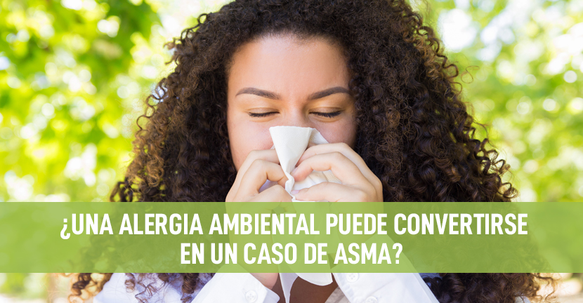 Imagen ¿Una alergia ambiental puede convertirse en un caso de asma?