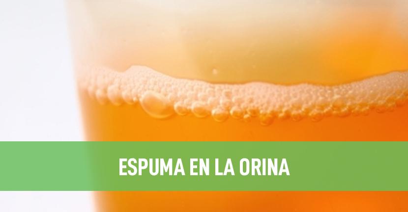 Imagen Espuma en la orina
