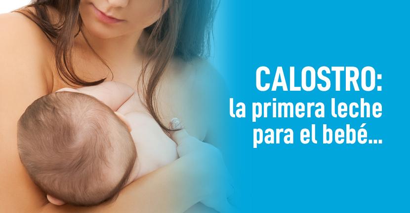 Imagen Calostro: la primera leche para el bebé