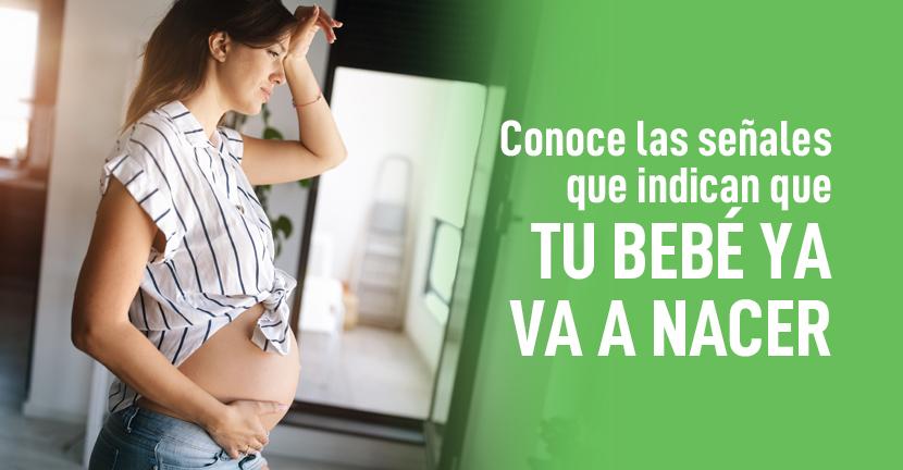 Imagen Conoce las señales que indican que tu bebé ya va a nacer.