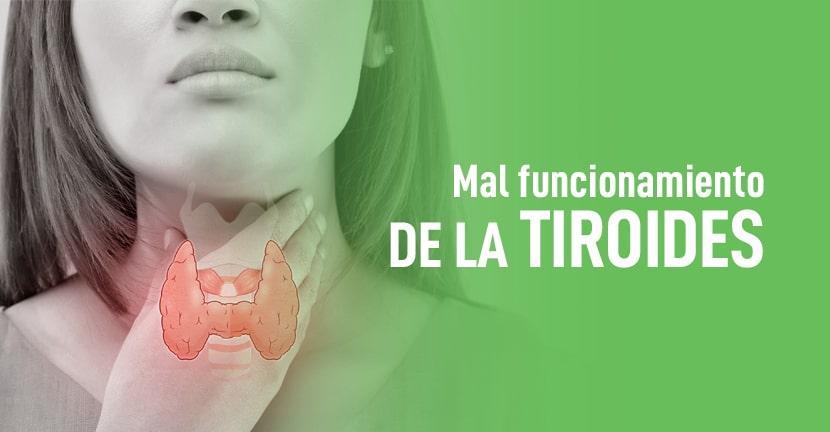 Imagen Mal funcionamiento de la tiroides