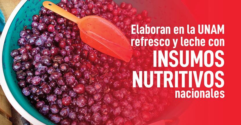 Imagen Elaboran en la UNAM refresco y leche con insumos nutritivos nacionales