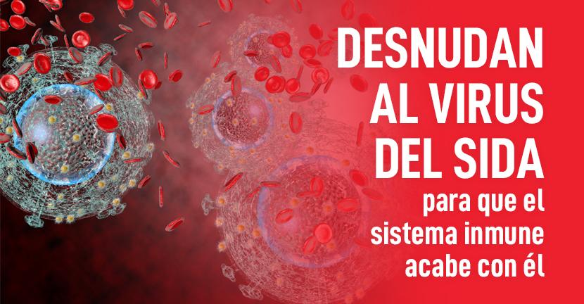 Imagen Desnudan al virus del sida para que el sistema inmune acabe con él