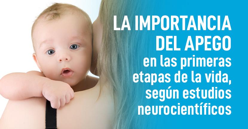 Imagen La importancia del apego en las primeras etapas de la vida, según estudios neurocientíficos