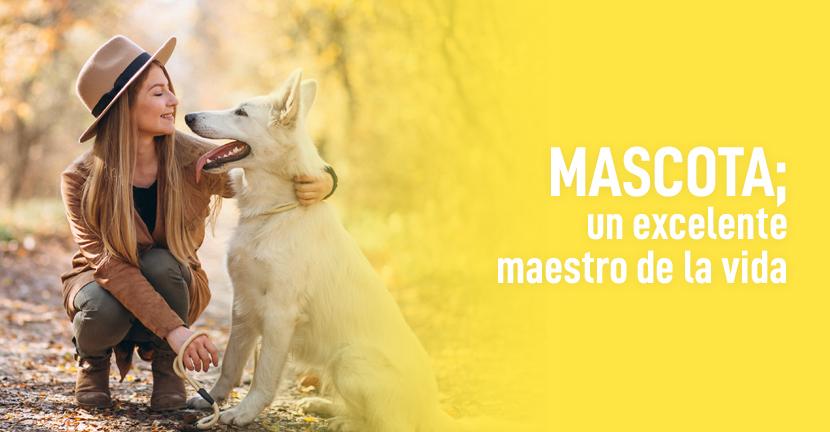 Imagen Mascota un excelente maestro de la vida