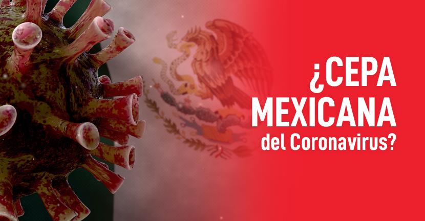 Imagen ¿Cepa mexicana del Coronavirus?