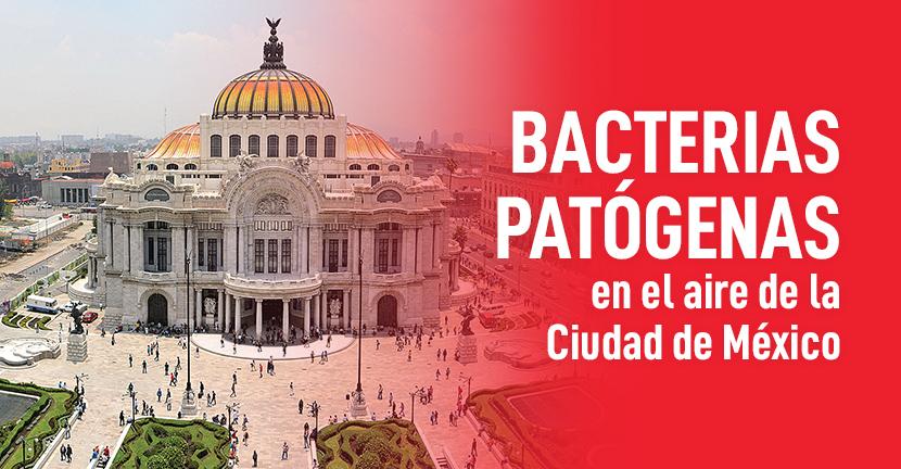 Imagen Bacterias patógenas en el aire de la Ciudad de México